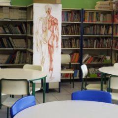 TCMSP apresenta resultados do segundo ano do Programa de Visitas às Escolas
